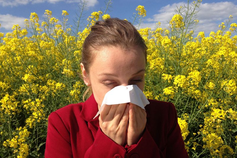 Seasonal Allergy Reality & How to Rock Your Antibodies for Relief