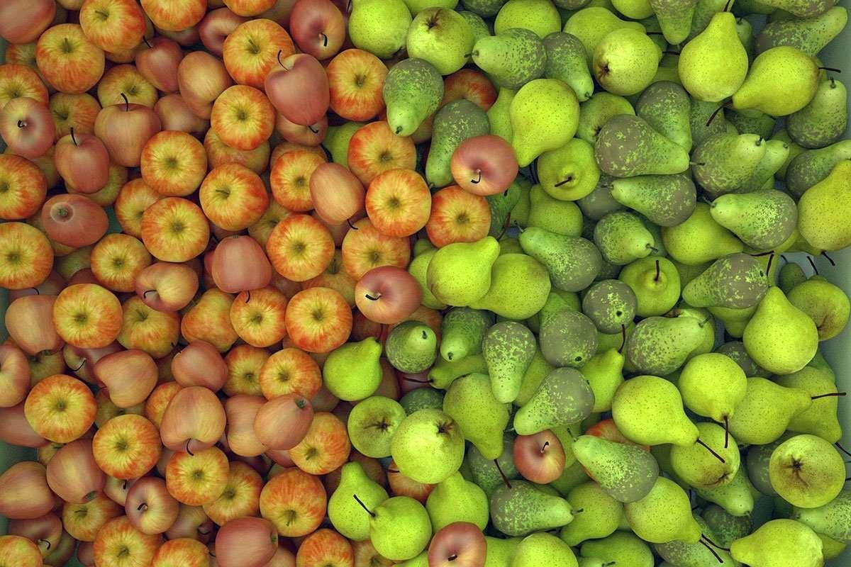 Chef Colombe's Fruit Bars Recipe
