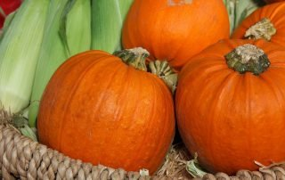 pumpkin corn guacamole recipe