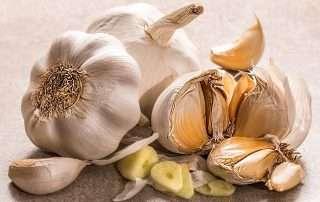 crispy garlic chips recipe